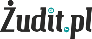 cropped-zudit_logo