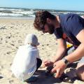7 niesamowitych zalet wakacji z dwulatkiem